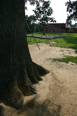 Natural Grass Playgrounds Typically Have Dirt Patches